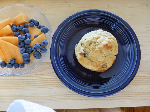 Blueberry Muffin – Samantha Ann King